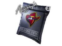 Csgo-cologne2015 renegades