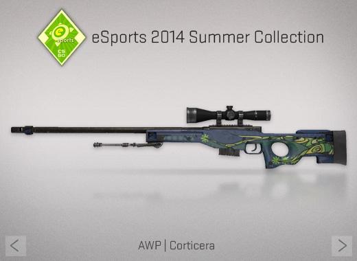 File:Esports3 AWP-Corticera.jpg