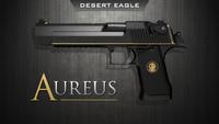 Desert-eagle-conspiracy-workshop