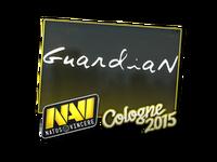 Csgo-col2015-sig guardian large