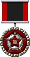 Medal hero s