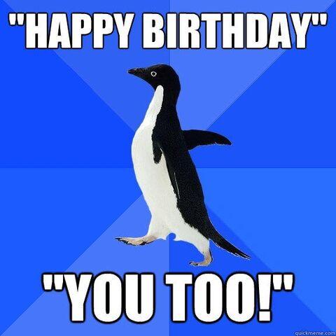 File:BirthdayPenguin.jpg