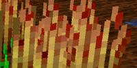 Redwheat