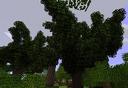 Rubber Tree (Redpower)