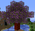 Thumbnail for version as of 18:27, June 18, 2013