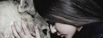 Marina-kaye-avec le loup