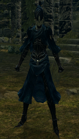 File:Lord's blade set female.png