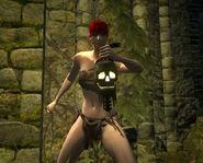 Skull lantern sf