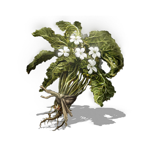 File:Budding Green Blossom.png