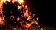 Pyromancy Feature 01
