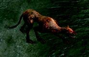 Flaming Attack Dog