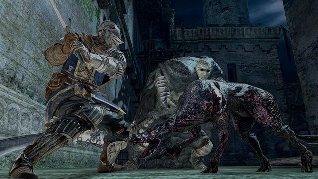 File:Dark Souls 2 Stray Hound and Bastille Mummy.jpg