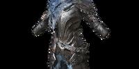 Wolf Knight Armor