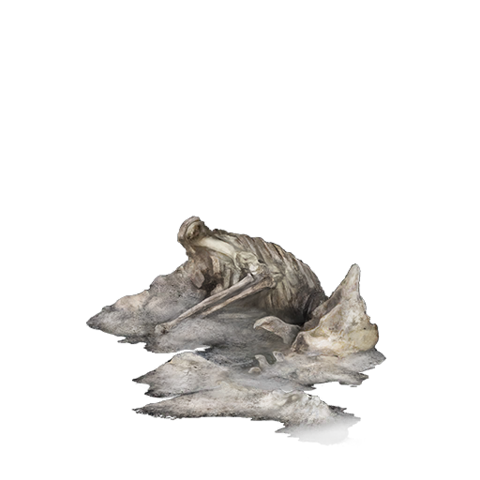 File:Undead Bone Shard.png