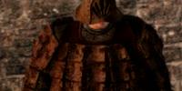 Gyrm Warrior Set