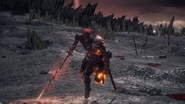 Soul of Cinder charging the player