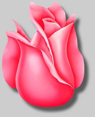 File:Rosebud-w-gray-lg.jpg
