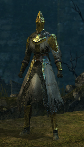 File:Paladin set male.png