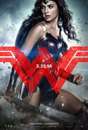 Batman v Superman Dawn of Justice - Wonder Woman character poster