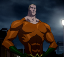 Orin (Justice League: The Flashpoint Paradox)