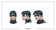 Nightwing head