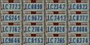 Autokennzeichen.png