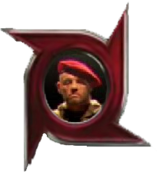File:DW warrior icon.png