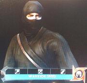 DW NinjaArmor01