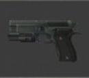 9mm Handgun FBI Custom