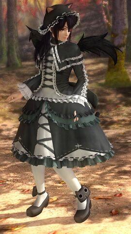 File:DOA5LR costume Senran Kagura Marie Rose.jpg