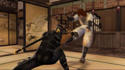File:Ryu vs. Hayate.png