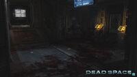 DS2 Multiplayer Screenshot02