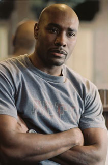 File:Morris-chestnut-1-sized.jpg