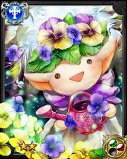 Gardener Panji NN+