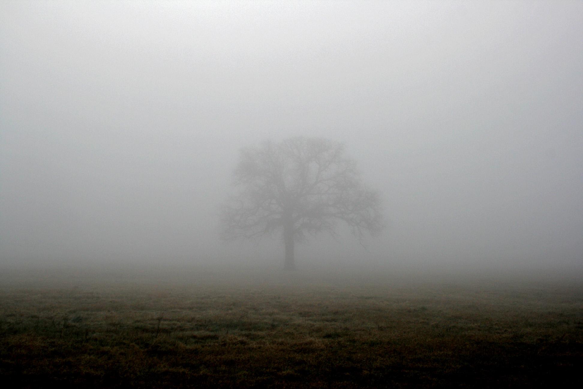 Mist | Demigods Haven Wiki | Fandom powered by Wikia