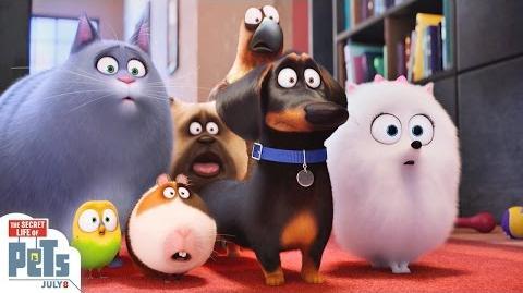 The Secret Life Of Pets - Trailer 3 (HD) - Illumination