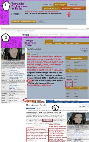 Datei:Wikia Hilfe Paket.jpg