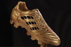 Goldener Schuh.jpg