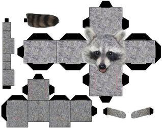 Raccoon by straffehond-d3cv9po