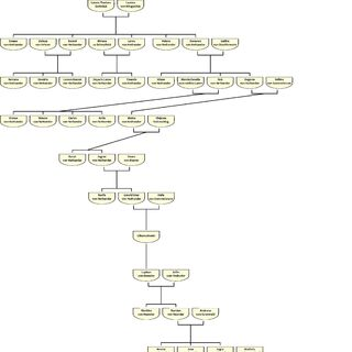 Stammbaum von Jamiro Eolarios