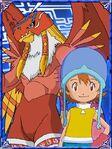 Sora & Garudamon 902 (DCo)