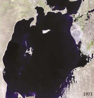 Aral sea 1973 landsat