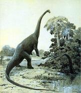 Diplodocus cknight