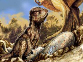 T-rex-juvenile