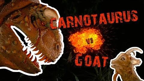 Carnotaurus vs Goat - Screaming Contest Walt Disney World Goat Friends WDW Best Day Ever