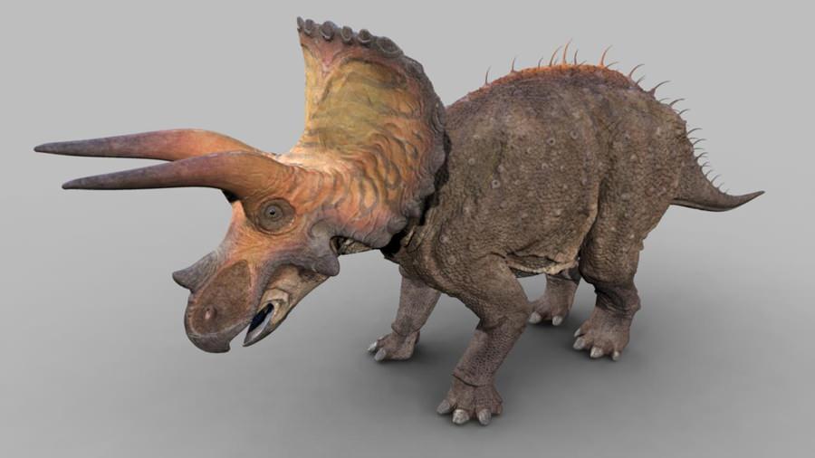 Triceratops | Dinosaur Revolution Wiki | FANDOM powered by ... Utahraptor Dinosaur Revolution