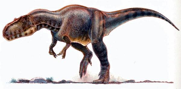 Xuanhanosaurus   Dinopedia   Fandom powered by Wikia