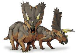 Pentaceratops-dinosaur-t7616