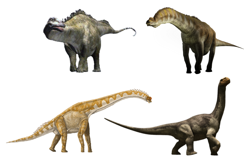 cretaceous animals