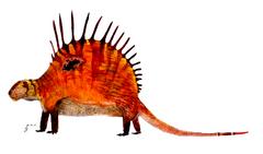 Dimetrodon giganhomogenes by traheripteryx-d92mixx.png